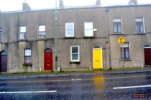 Doors of Dublin | Dublin, Ireland (Shot on Nikon D3100)