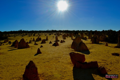The Pinnacles | Perth, Western Australia (Shot on Nikon D3100)