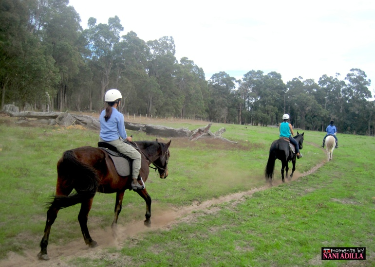 Horseriding at Jesters Flat