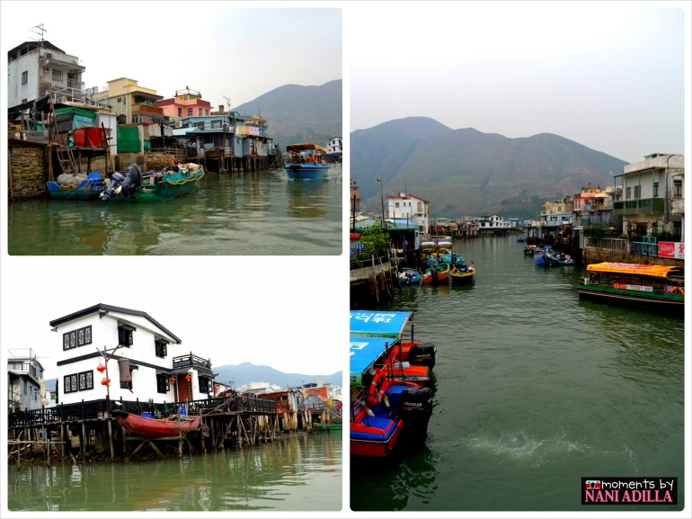 Boat excursion to Tai-O