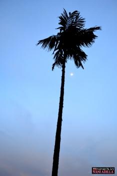 At dusk | Penang, Malaysia (Shot on Nikon D3100)