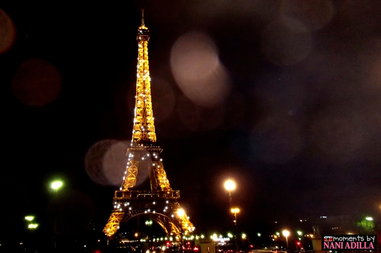 The Eiffel Tower sparkles at 8pm hourly