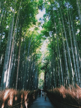 Arashiyama bamboo forest | Kyoto, Japan (Shot on iPhone 5S)